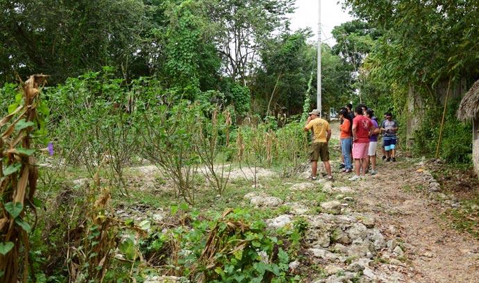 senderismo-cenote-ruinas-mayas